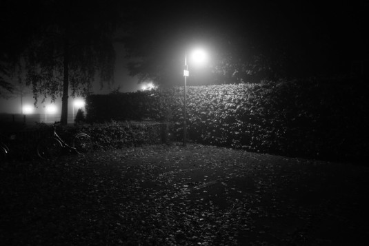 17_naked_city_fog_small