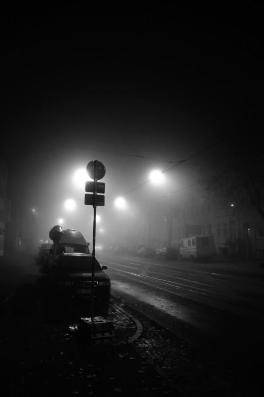 8_naked_city_fog_small
