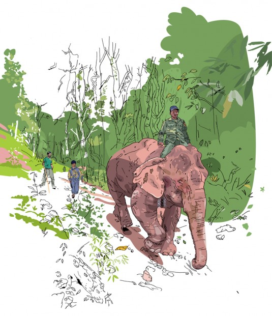 lets_be_brief_olivier_kugler_laos_elephant_mahout