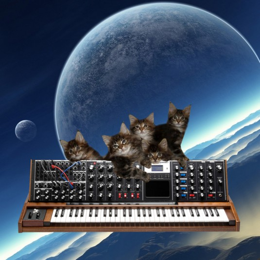 cats_on_synthesizers_in_space_10