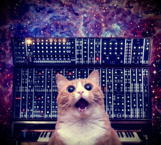 cats_on_synthesizers_in_space_12