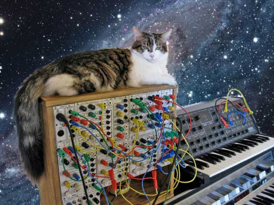 cats_on_synthesizers_in_space_4