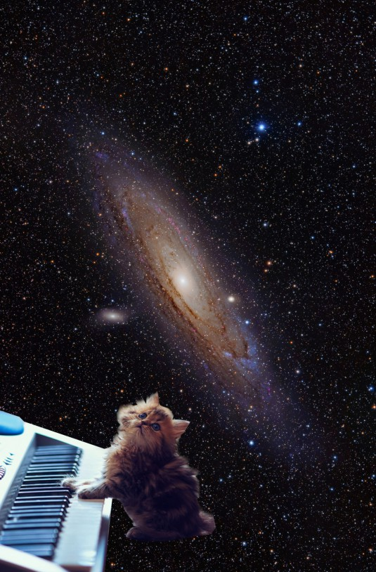 cats_on_synthesizers_in_space_5