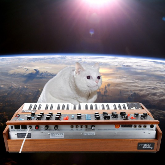 cats_on_synthesizers_in_space_6