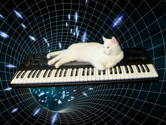cats_on_synthesizers_in_space_7