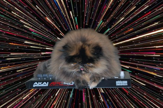 cats_on_synthesizers_in_space_8